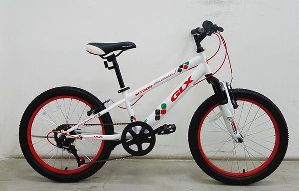 xe-dap-glx-mt208-3