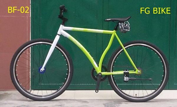 xe-dap-fury-bf500-02