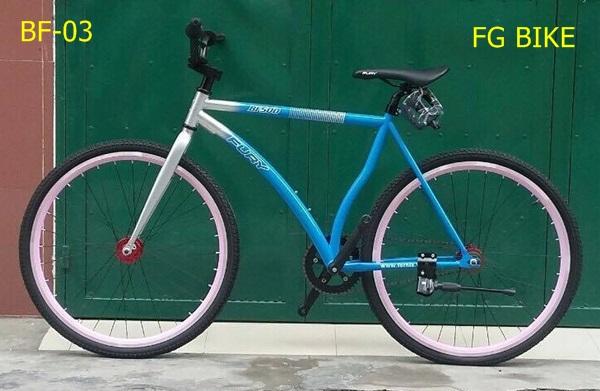xe-dap-fury-bf500-03