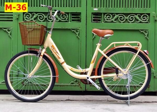 xe-dap-mini-ca-heo-vanh-24-294