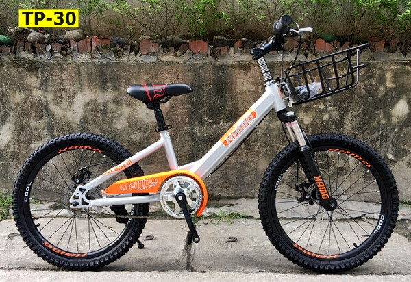 xe-dap-tre-em-champion-vanh-20-252