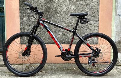 XE DAP VINABIKE V168 02